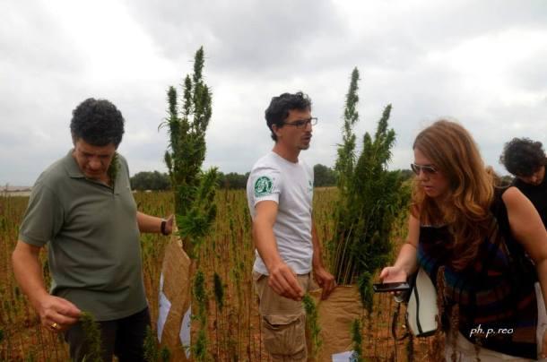 Da sinistra, Vladimiro Santi Spanna, Claudio Natile, ed io mentre cercavo di capire le centinaia di essenze di questa pianta tutta da scoprire.